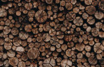miglior legno camino